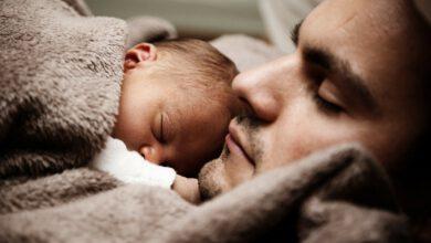 Photo of Roban en casa mientras los dueños duermen